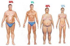 body-fat-1