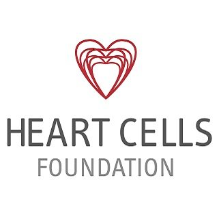 Heart cells foundation