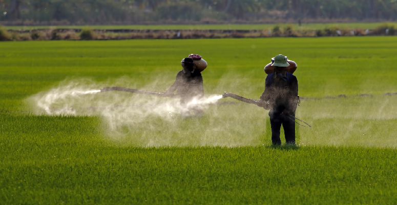 Roundup, Glyphosate and detoxing with a new product. Featured Image